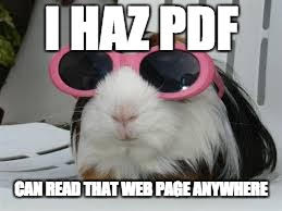 "Image of a guinea pig in sun glasses, saying ""I haz PDF."""