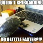 Image of a turtle typing